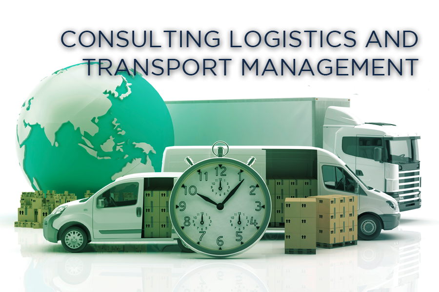 Consulting Logistics and Transport Management